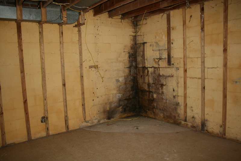 basement 1-BEFORE